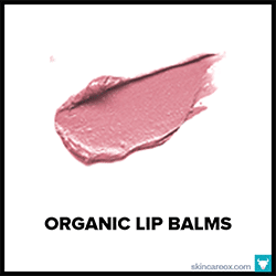 The Big Book of Organic Lip Balms