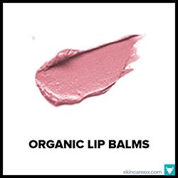 The Big Book of Organic Lip Balms
