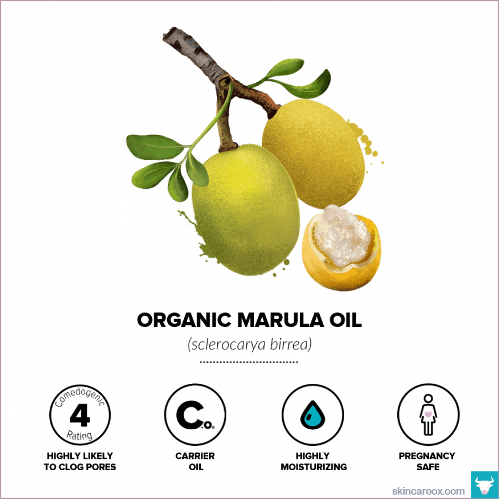 Organic Marula Oil for Skin Care - Skin Care Ox