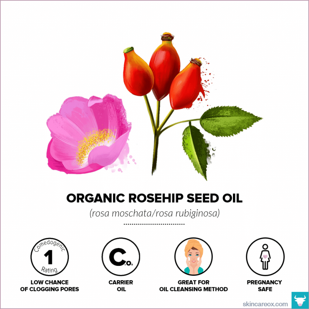 Organic Rosehip Seed Oil for Skin Care - Skin Care Ox