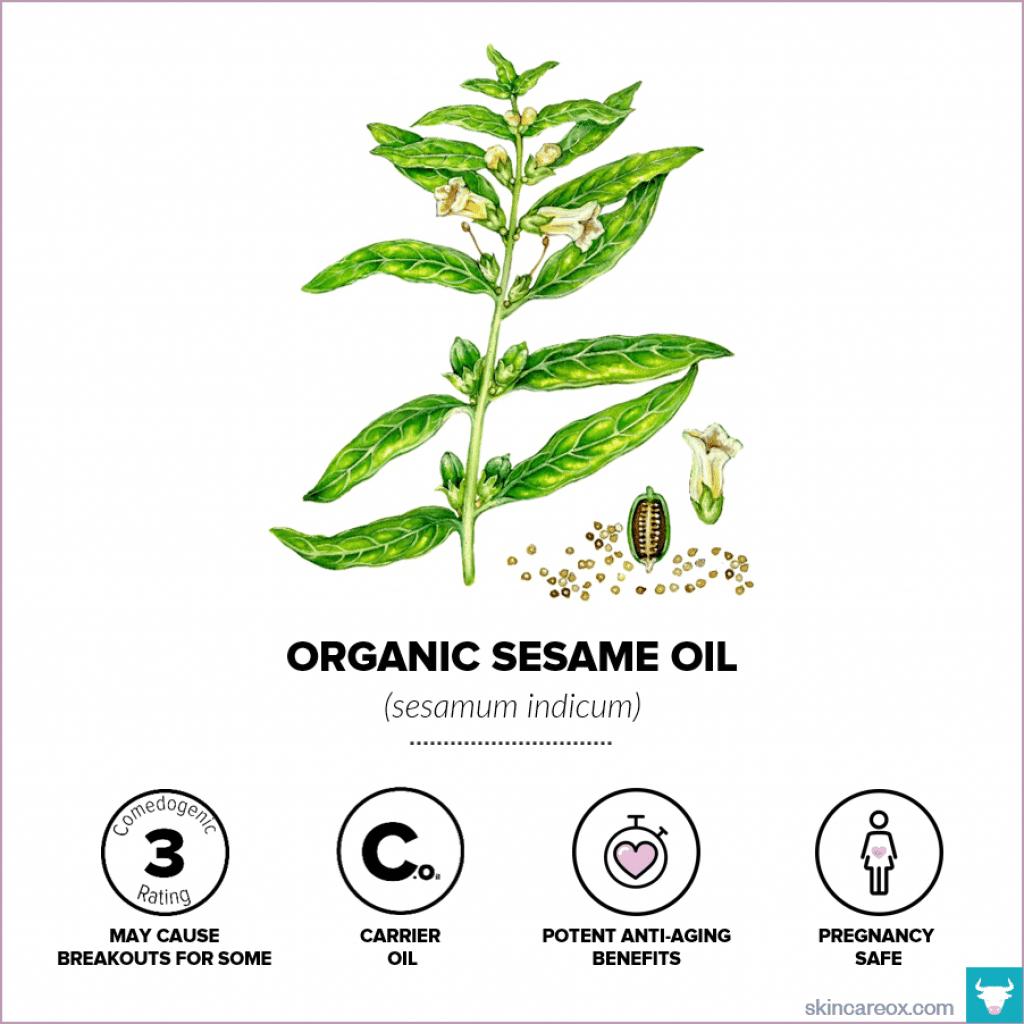 Organic Sesame Oil for Skin Care - Skin Care Ox