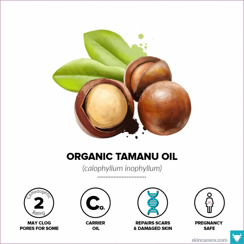 Organic Tamanu Oil for Skin Care - Skin Care Ox